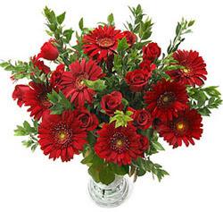 5 adet kirmizi gül 5 adet gerbera aranjmani  Ankara hediye çiçek yolla