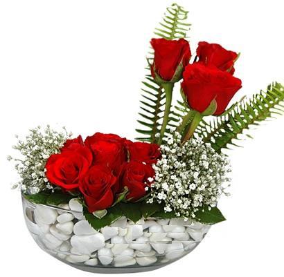 cam içerisinde 9 adet kirmizi gül  Ankara çiçek siparişi vermek