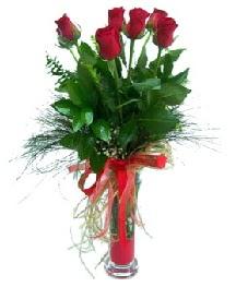 vazo içerisinde 5 kırmızı gül  Ankara güvenli kaliteli hızlı çiçek