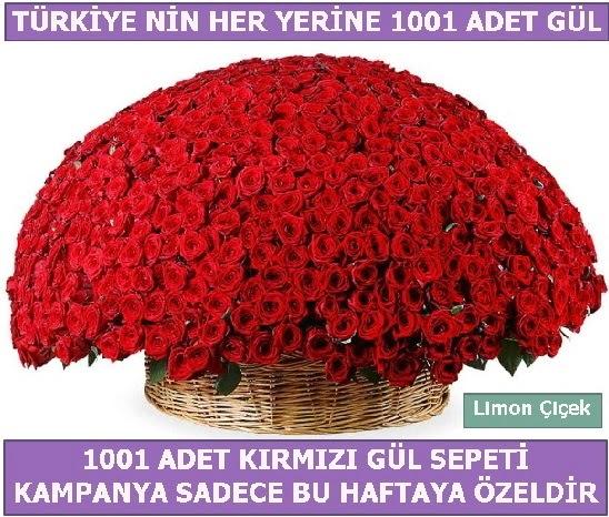 1001 Adet kırmızı gül Bu haftaya özel  Ankara İnternetten çiçek siparişi