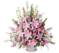 Ankara çiçek siparişi sitesi  Tanzim mevsim çiçeklerinden çiçek modeli