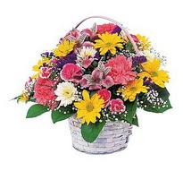 Ankara çiçek , çiçekçi , çiçekçilik  mevsim çiçekleri sepeti özel