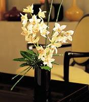 Ankara çiçekçiler  cam yada mika vazo içerisinde dal orkide