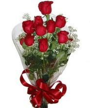9 adet kaliteli kirmizi gül   Ankara online çiçekçi , çiçek siparişi