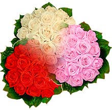 3 renkte gül seven sever   Ankara çiçek , çiçekçi , çiçekçilik