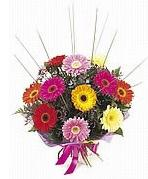 karisik gerbera çiçekleri  Ankara çiçek yolla