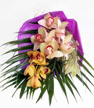 Ankara cicekciler , cicek siparisi  1 adet dal orkide buket halinde sunulmakta