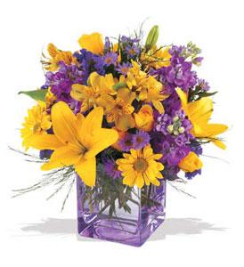 Ankara çiçek mağazası , çiçekçi adresleri  cam içerisinde kir çiçekleri demeti