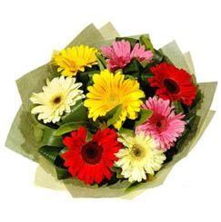 9 adet karisik gerbera demeti  Ankara çiçek mağazası , çiçekçi adresleri