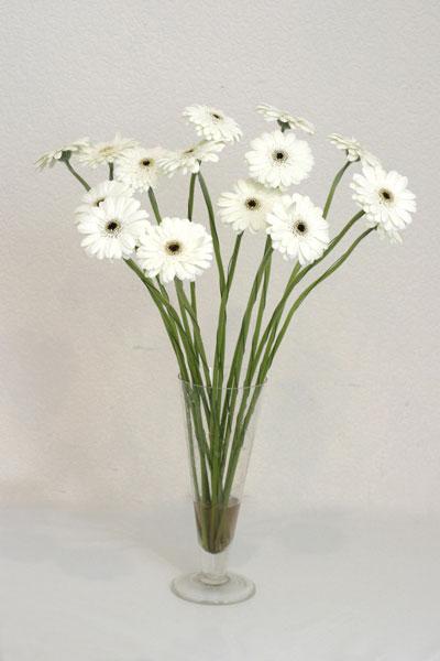 Ankara çiçek mağazası , çiçekçi adresleri  cam vazo içerisinde 17 adet sade gerbera