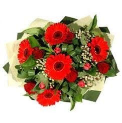 Ankara ucuz çiçek gönder   5 adet kirmizi gül 5 adet gerbera demeti