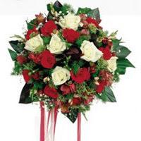 Ankara ucuz çiçek gönder  6 adet kirmizi 6 adet beyaz ve kir çiçekleri buket