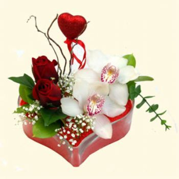 Ankara hediye sevgilime hediye çiçek  1 kandil orkide 5 adet kirmizi gül mika kalp