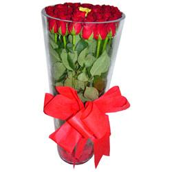 Ankara çiçek online çiçek siparişi  12 adet kirmizi gül cam yada mika vazo tanzim