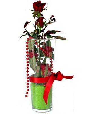 Ankara online çiçek gönderme sipariş  Cam yada mika içerisinde 9 adet kirmizi gül - sevdiklerinize özel