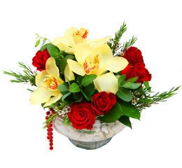 Ankara çiçek gönderme  1 kandil kazablanka ve 5 adet kirmizi gül