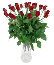 Ankara çiçekçi telefonları  11 adet kimizi gülün ihtisami cam yada mika vazo modeli