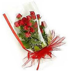 13 adet kirmizi gül buketi sevilenlere  Ankara çiçek siparişi vermek
