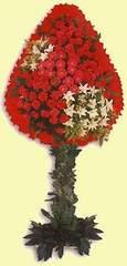 Ankara çiçek gönderme  dügün açilis çiçekleri  Ankara çiçek online çiçek siparişi