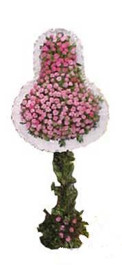 Ankara ucuz çiçek gönder  dügün açilis çiçekleri  Ankara internetten çiçek siparişi