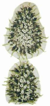 Ankara çiçek siparişi vermek  dügün açilis çiçekleri nikah çiçekleri  Ankara güvenli kaliteli hızlı çiçek