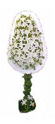Ankara çiçek siparişi sitesi  nikah , dügün , açilis çiçek modeli  Ankara online çiçek gönderme sipariş