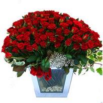 Ankara çiçekçiler   101 adet kirmizi gül aranjmani