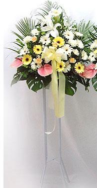 Ankara online çiçek gönderme sipariş   perförje çiçegi dügün çiçekleri