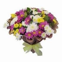 Ankara çiçekçi telefonları  Mevsim kir çiçegi demeti