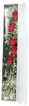 Ankara çiçek siparişi sitesi   5 adet gülden kutu güller