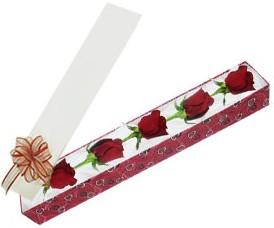 Ankara internetten çiçek satışı  kutu içerisinde 5 adet kirmizi gül