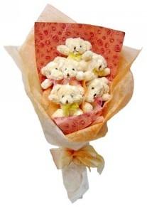 12 adet ayiciktan buket  Ankara çiçek siparişi sitesi