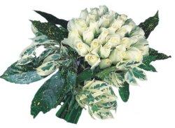 Ankara internetten çiçek siparişi  9 Beyaz gül Özel kisiler için