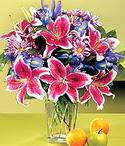 Ankara çiçek mağazası , çiçekçi adresleri  Sevgi bahçesi Özel  bir tercih