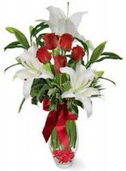 Ankara çiçek siparişi vermek  5 adet kirmizi gül ve 3 kandil kazablanka
