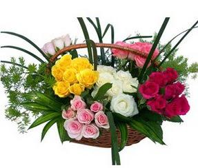 Ankara ucuz çiçek gönder  35 adet rengarenk güllerden sepet tanzimi