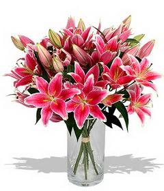 4 dal cazablanca görsel vazosu  Ankara çiçekçi mağazası