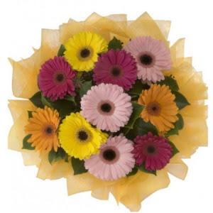 Ankara İnternetten çiçek siparişi  11 adet karışık gerbera çiçeği buketi