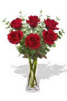 Ankara çiçekçi mağazası  6 kırmızı gül vazosu
