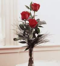 Ankara internetten çiçek satışı  Vazoda 3 adet güzel gül