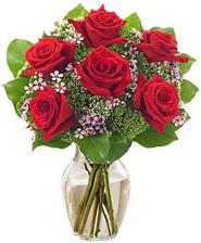 Kız arkadaşıma hediye 6 kırmızı gül  Ankara internetten çiçek siparişi