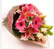1 dal kazablanka ve mevsim çiçekleri  Ankara internetten çiçek siparişi