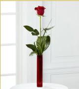 Vazo içerisinde 1 adet kırmızı gül  Ankara internetten çiçek siparişi