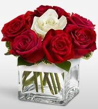 Tek aşkımsın çiçeği 8 kırmızı 1 beyaz gül  Ankara uluslararası çiçek gönderme