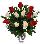 Vazo içerisinde 6 kırmızı 6 beyaz gül  Ankara hediye çiçek yolla
