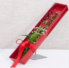 Kutu içerisinde 3 adet kırmızı gül  Ankara online çiçek gönderme sipariş