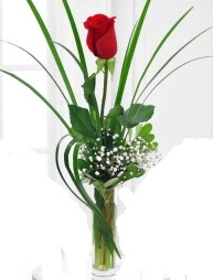 Cam içerisinde 1 kırmızı gül  Ankara çiçek gönderme sitemiz güvenlidir