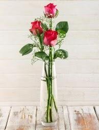 Cam içerisinde 3 kırmızı gül  Ankara çiçek satışı
