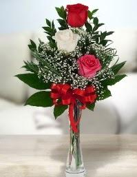 Camda 2 kırmızı 1 beyaz gül  Ankara ucuz çiçek gönder