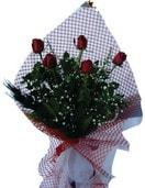 Ankara çiçekçi mağazası  5 adet kirmizi güllerden buket